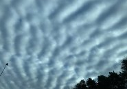 Mackerel sky over Boston