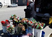 Mr. Mahoney selling flowers out of his van on Old Colony Avenue