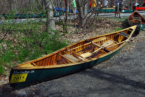Canoe in Needham