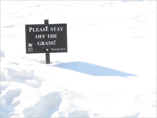 Keep off the snow