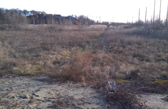 Lost field