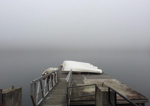 Fogged in Jamaica Pond