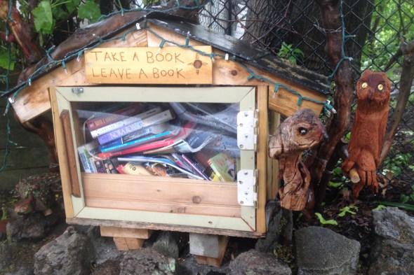 tiny library in Jamaica Plain