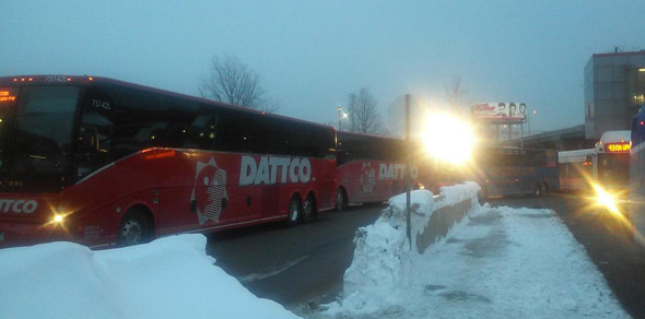 Buses at JFK/UMass