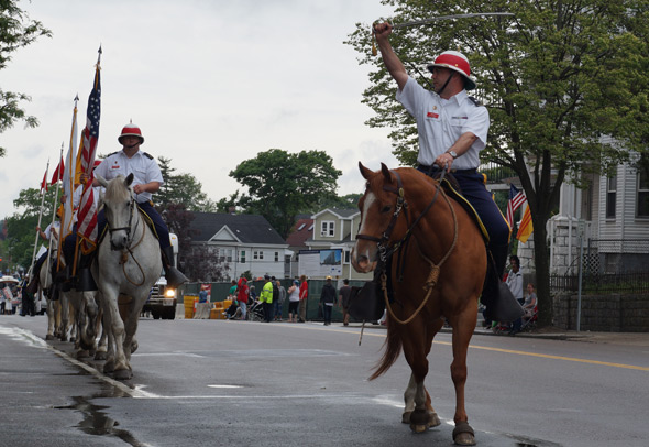 Horses in Dorchester Day parade