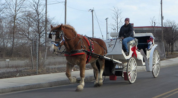 Horse carriage in Boston Marine Industrial Park