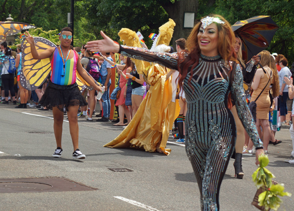 Pride: Butterfly dancer