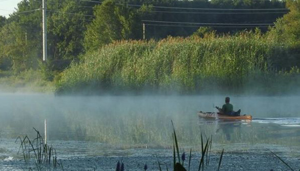 Paddling through the mist on the Charles River at Millennium Park