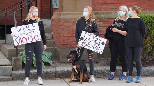 Dogs against disparities